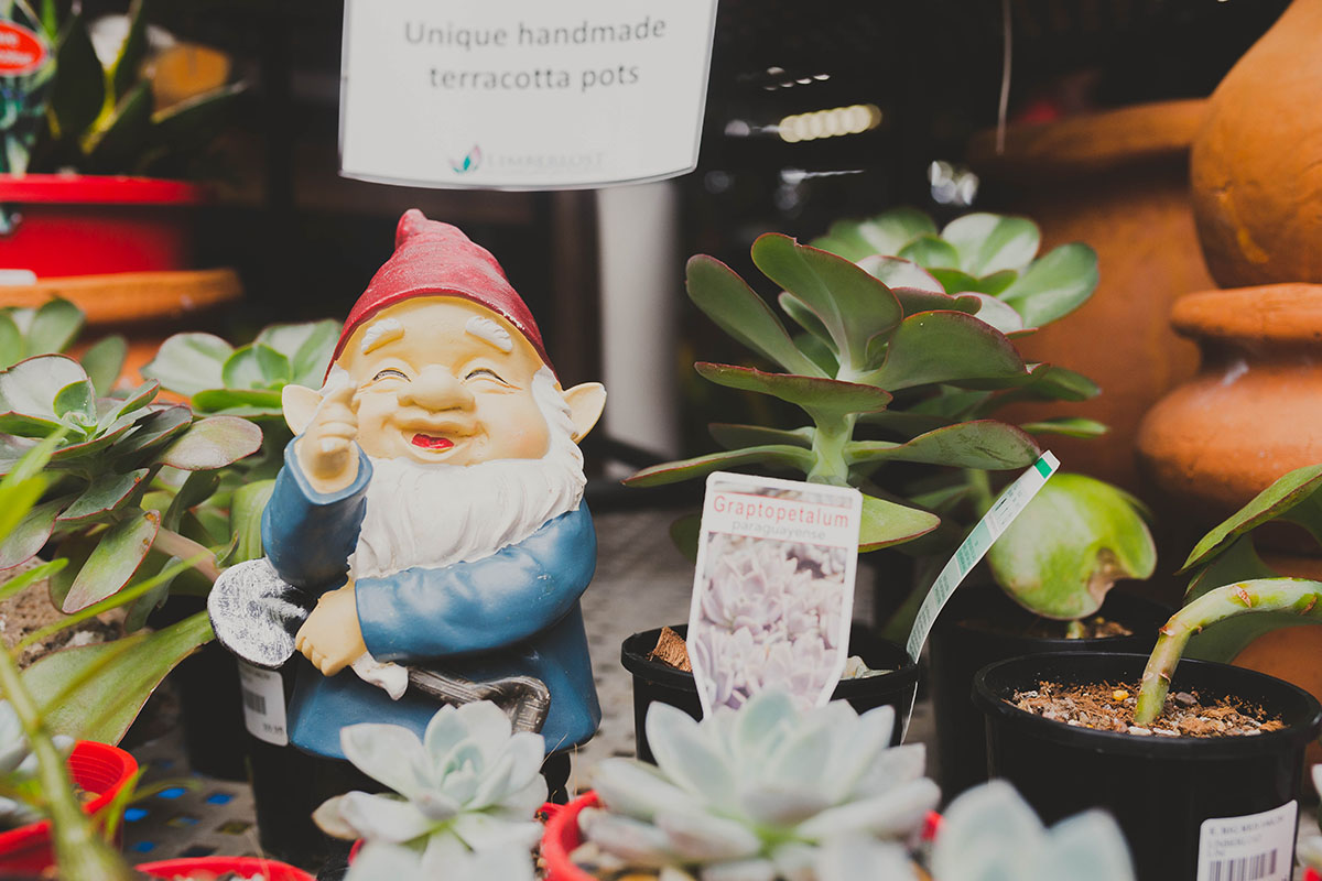 Discover our Giftware at Limberlost Garden Centre